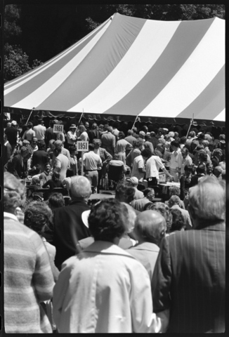 Photographs of Amherst Holiday, 1976 June 9-11