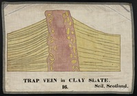 Orra White Hitchcock drawing of trap vein in clay slate, Seil, Scotland
