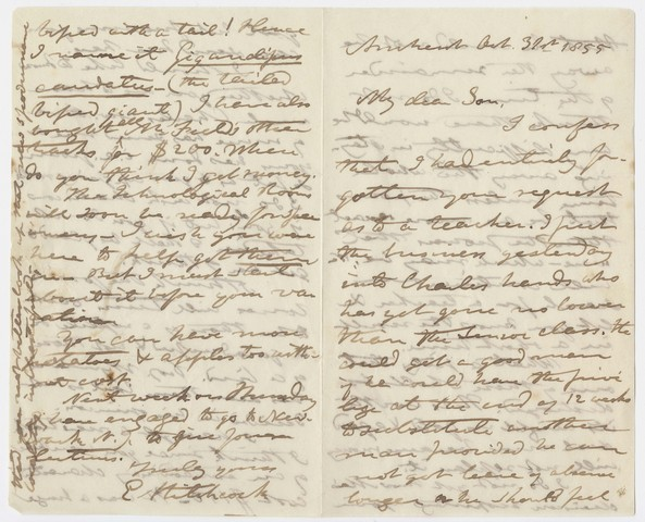 Edward Hitchcock letter to Edward Hitchcock, Jr., 1855 October 31