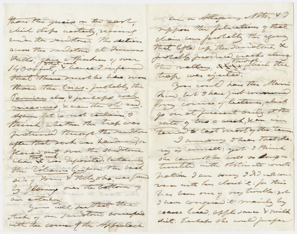 Edward Hitchcock letter to Edward Hitchcock, Jr., 1854 January 15