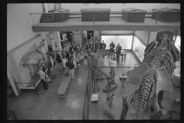 Photographs of a tour of the Pratt Museum of Natural History, 1999 November